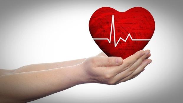 Một trong những lợi ích lớn nhất của hạt điều là trái tim.