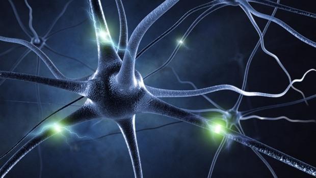 Một trong những lợi ích tốt nhất của hạt điều là bảo vệ thần kinh trung ương